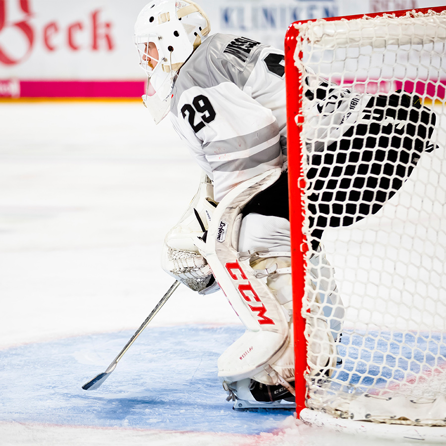 Hockey Goalie rehabilitation tips physiotherapy