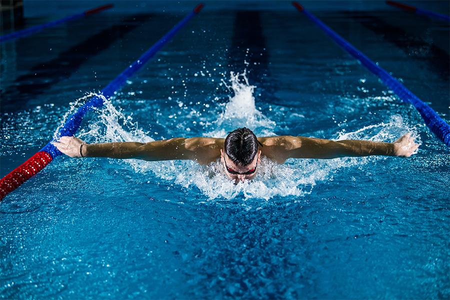 male Swimmer in pool lane